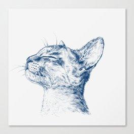 Cute chilling cat Canvas Print