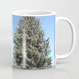 Colorado Blue Spruce, front yard, doubled Coffee Mug