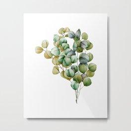 Watercolor Eucalyptus . 04 Metal Print
