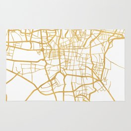 TEHRAN IRAN CITY STREET MAP ART Rug