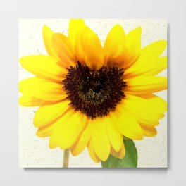 Heart shape Love Yellow sunflower Metal Print