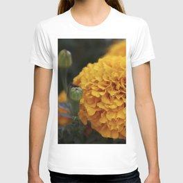 Flor de Cempasuchil T-shirt