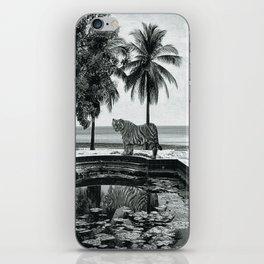 enimals 8 tiger iPhone Skin