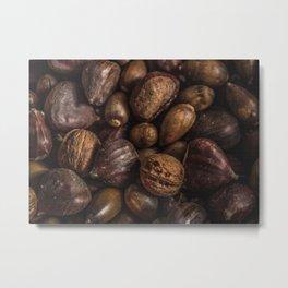 Nuts Pattern Metal Print