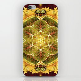 Mandalas for Times of Transition 8 iPhone Skin