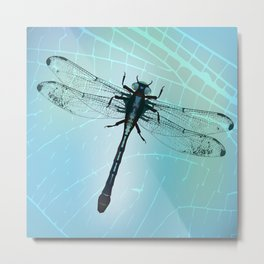 Dragonfly vector Metal Print