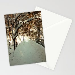 Snowshoeing through Vaughan's Woods Stationery Cards