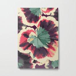 Colorful Geranium Illustrated Print Metal Print