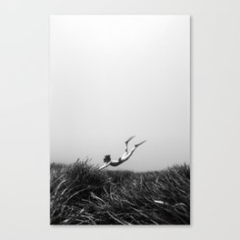 170614-7263b Canvas Print