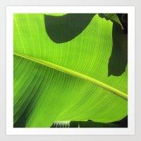banana leaf Art Prints featuring Banana Leaf, Dark Shadows by Glenn Designs