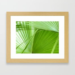 Palm Leaves // Tropical Wall Art, Beach Cottage Decor, Coastal Art Framed Art Print