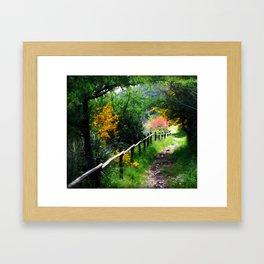 The Path Almost Taken Framed Art Print