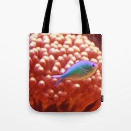 The Wonder Fish Tote Bag