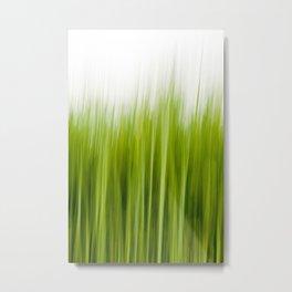 Grass wipe --- Gras-Wusch Metal Print