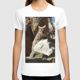 Cute Squirrel by Teresa Thompson T-shirt