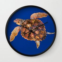 Loggerhead turtle Wall Clock