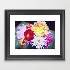 Darling Dahlias I Framed Art Print
