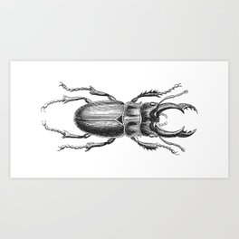 Vintage Beetle black and white Art Print