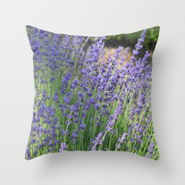 Lavender Wave Throw Pillow