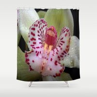 orchid Shower Curtains featuring Orchid by Vitta