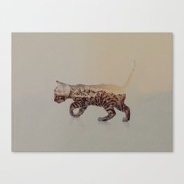 Cat: Bengal Kitten Canvas Print