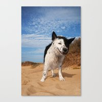 border collie Canvas Prints featuring Border Collie by Cowden