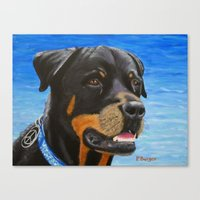 rottweiler Canvas Prints featuring Rottweiler by paintintheneck