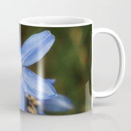 Snow glories Coffee Mug