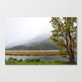 Season's First Snow II Canvas Print