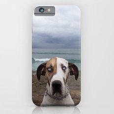 Great Dane iPhone 6s Slim Case