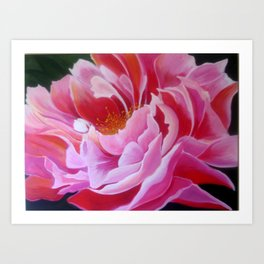 """Pink Peony"" Art Print"