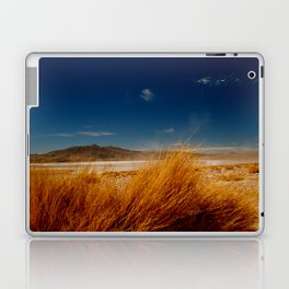 AndesHigh Laptop & iPad Skin