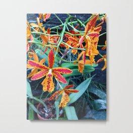 Petite Sunset Flowers Metal Print