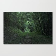 green portal Canvas Print