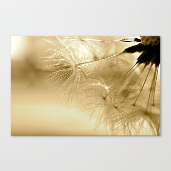 Diana's Dandelion Sepia Canvas Print