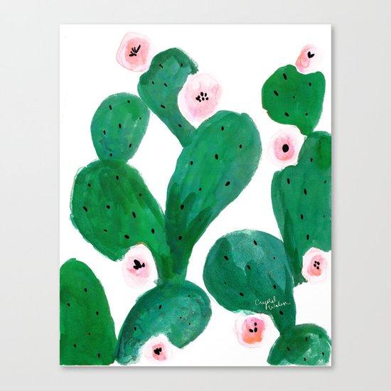 Cactus Clean Green Canvas Print
