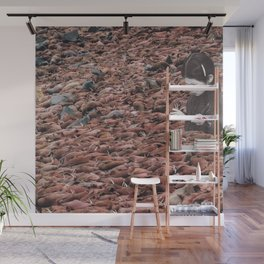 Counting Walrus Wall Mural