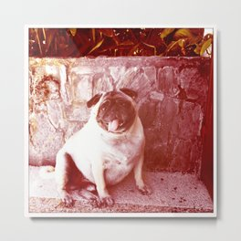 Romeo Posing Metal Print