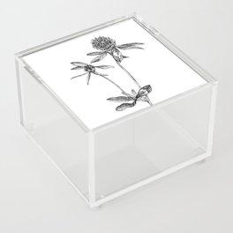 Clover Acrylic Box