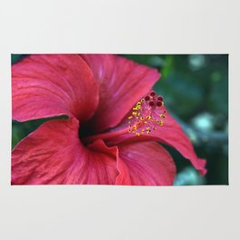 Hibiscus Rug