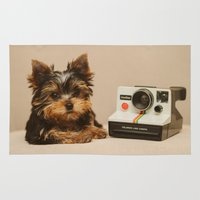 yorkie Area & Throw Rugs featuring A Yorkie Puppy and a Polaroid Land Camera by Dustin Hall