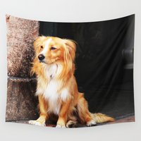 lonely Wall Tapestries featuring Lonely dog by Carlo Toffolo