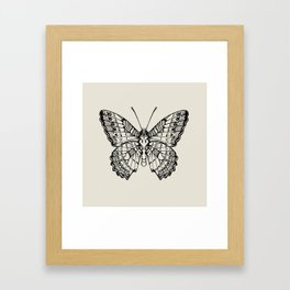 Lacewing Butterfly Framed Art Print