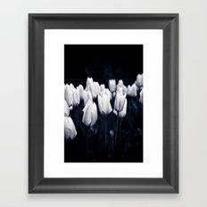 White Tulips In Cool Light Framed Art Print