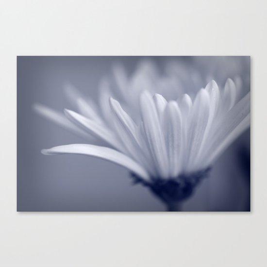 White Flower Macro Canvas Print