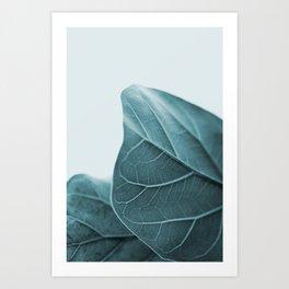 Teal Plant Leaves Art Print