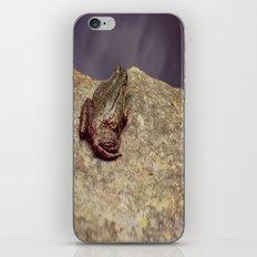 Froggy iPhone & iPod Skin