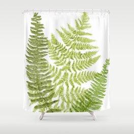 Fresh Fern II Modern Botanical  Shower Curtain