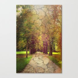 where the road leads to Canvas Print