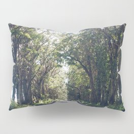Tunnel of Trees - Color - Kauai, Hawaii Pillow Sham